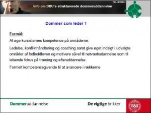 Struktureret dommerudd 5